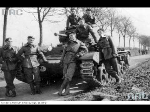 Liberation of Flanders by the 1st Polish Armoured Division