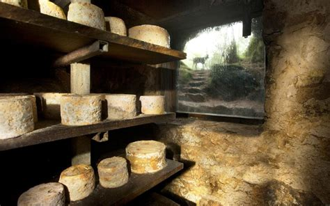 Where to eat cheese in Asturias